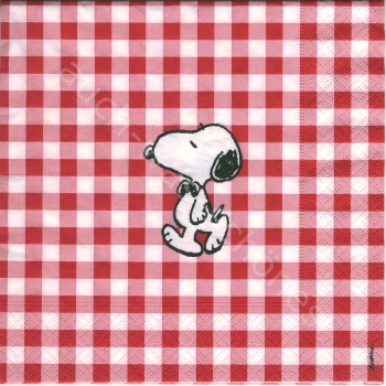 Comic -Snoopy - Amerika - Peanuts - Picnic - co077