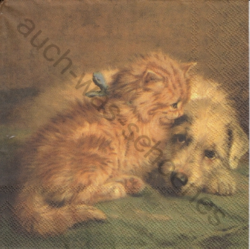 Serviette - Katze - Kätzchen - Hund - dog & cat - chat - ka139